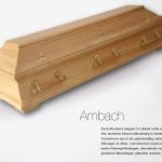 Ambach S17